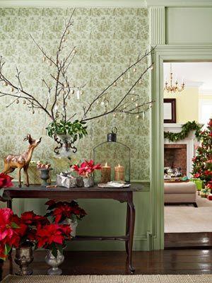celebrate-xmas-tree-branch-mdn-98820335