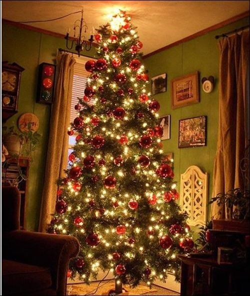 living-room-christmas-tree_thumb